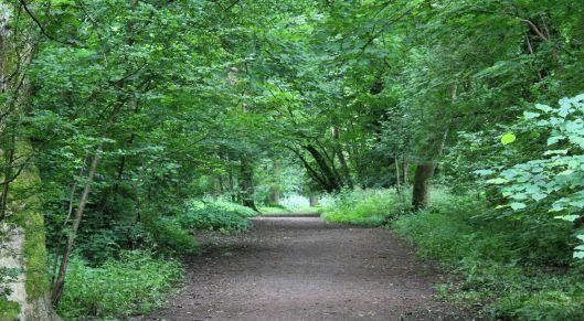 160612 heath park (1)