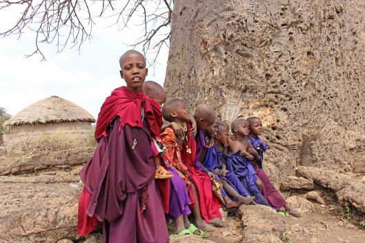 160831 baobab (4)