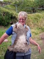 161020-international-sloth-day-4