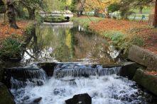 161113-roath-park-autumn-6