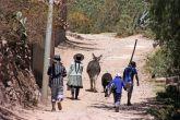 161116-donkeys-peru-8