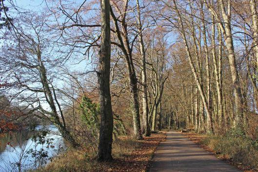 161204a-taff-trail-1
