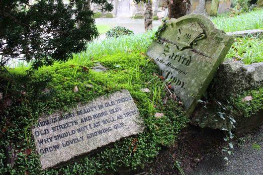 170105-st-just-churchyard-lichens-3