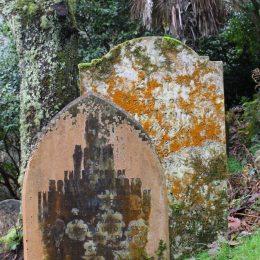 170105-st-just-churchyard-lichens-4