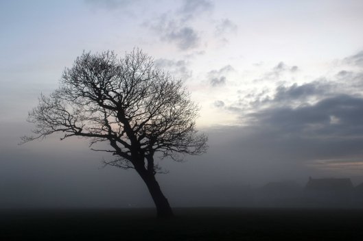 170125-penarth-fog-1