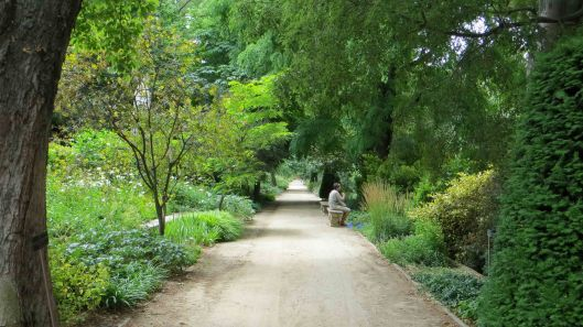 170517 Royal Botanic Garden Madrid (9)