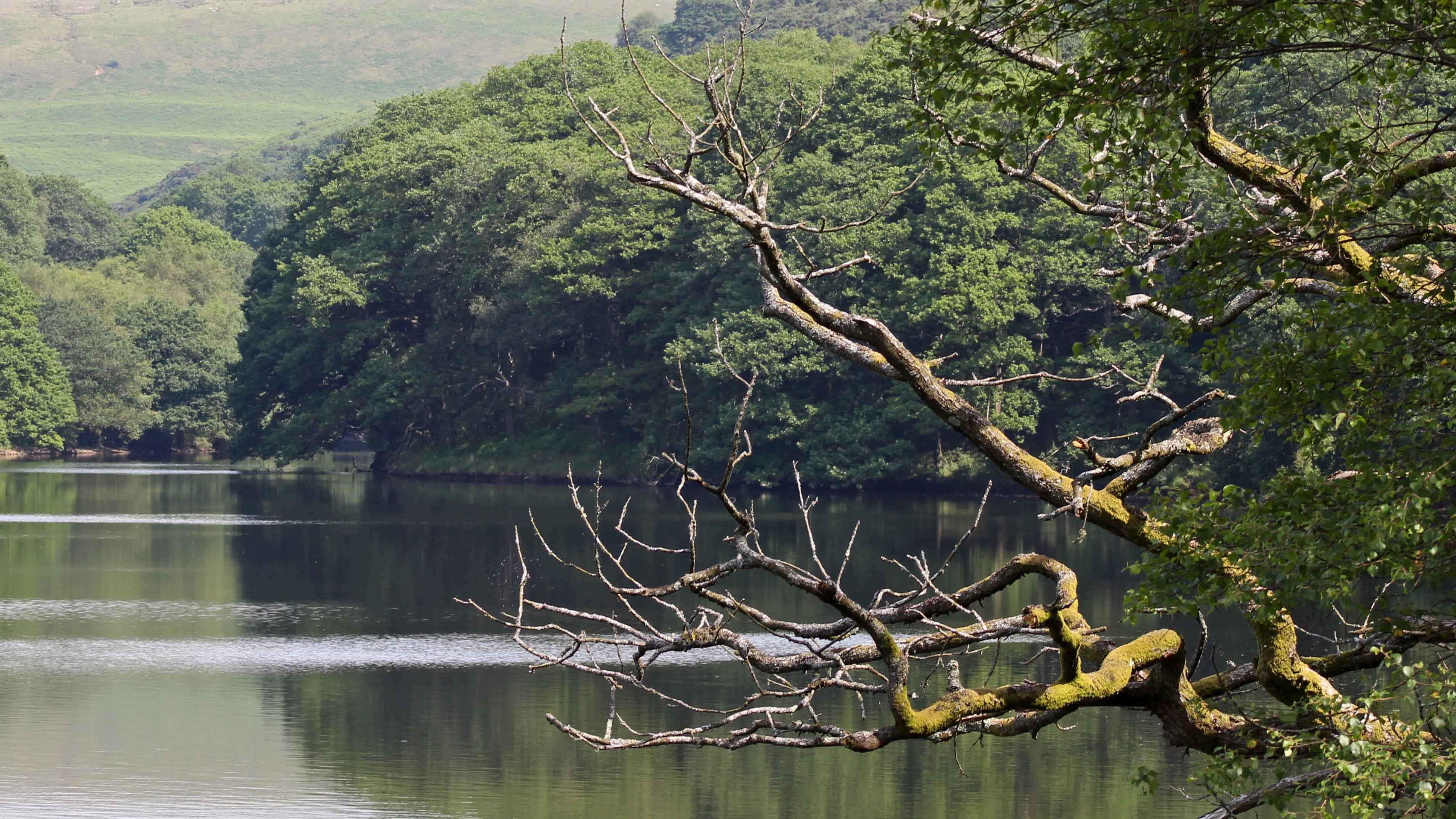 170625 Lliw Reservoirs (1)