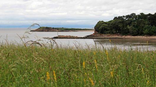 170701 Lavernock Reserve (2)