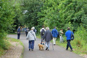 170719 Cardiff naturalists