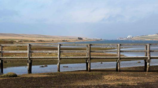 171021 Chesil Beach (2)