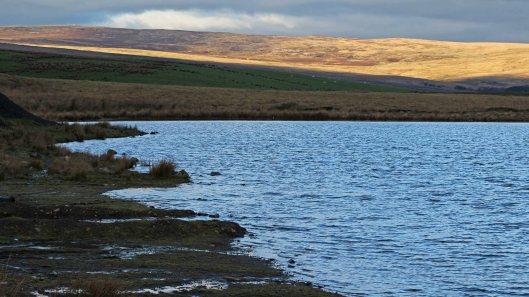 171205 Rhaslas Pond (4)
