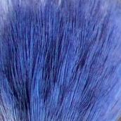 171224 blue (2)