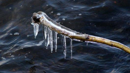 180228 icicle (1)