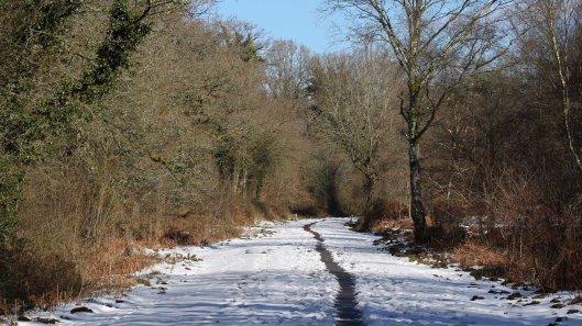 180310 snowy landscape (2)