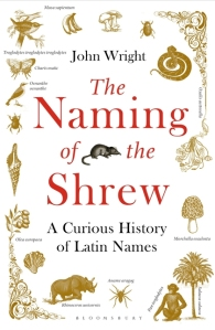 180509 Naming of the Shrew