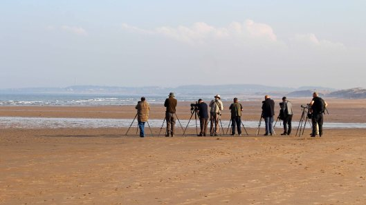 180512 Seawatching at Druridge Bay