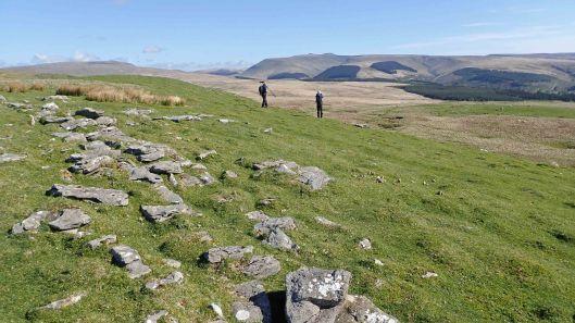 180517 near Cefn Cadlan