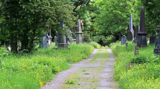 180601 (1) Cathays Cemetery