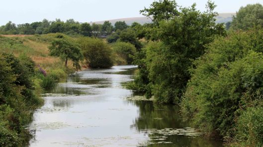 180801 Arlington stream