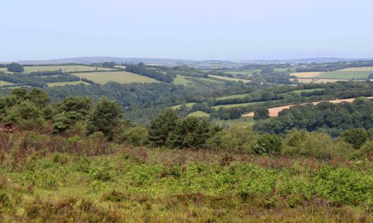 190628 Haddon Hill views