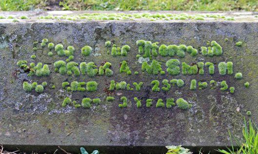 210227 mossy gravestone (1)